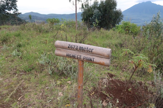 BISATE LODGE: PATH TO HILLTOP