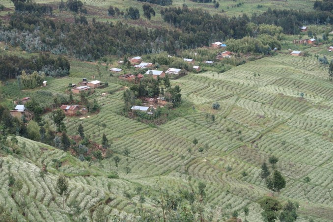 BISATE LODGE: VIEW FROM HILLTOP