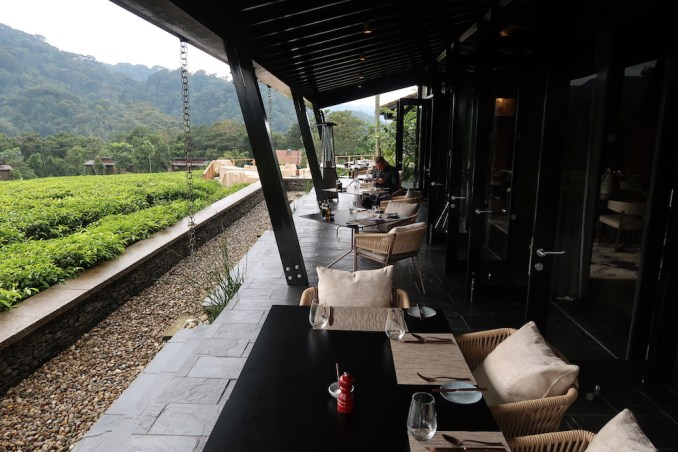 ONE&ONLY NYUNGWE HOUSE: LUNCH