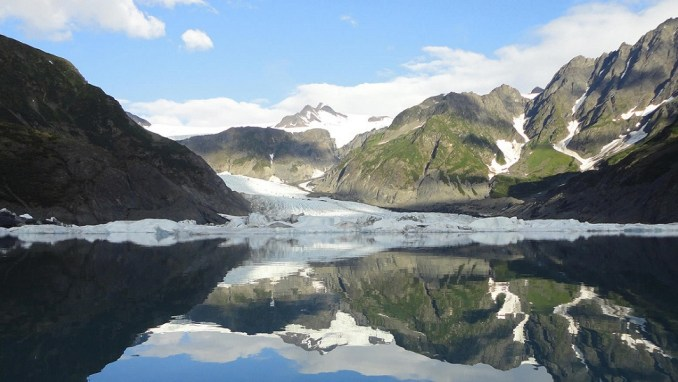 TAKE A WILDLIFE CRUISE TO KENAI FJORDS GLACIER LODGE (ALASKA, USA)