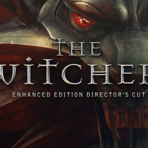 The Witcher Enhanced Edition Directors Cut