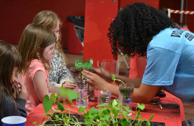 students-learning-about-growing-plants