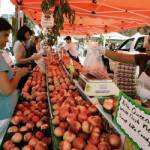 More Wisconsin Farmers Markets Welcome Food Stamps