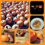 {Almost} Wordless Wednesday with Pumpkins!