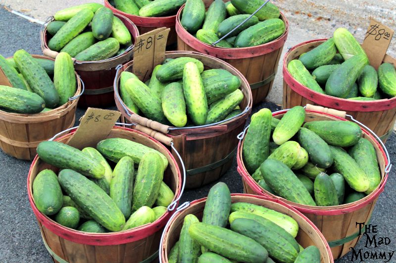Cucumbers at the Farmer's Market