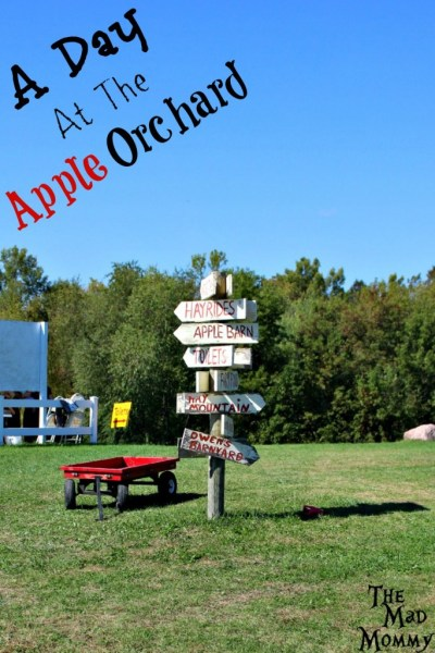Spending a day at an apple orchard is definitely a must-do Fall activity!