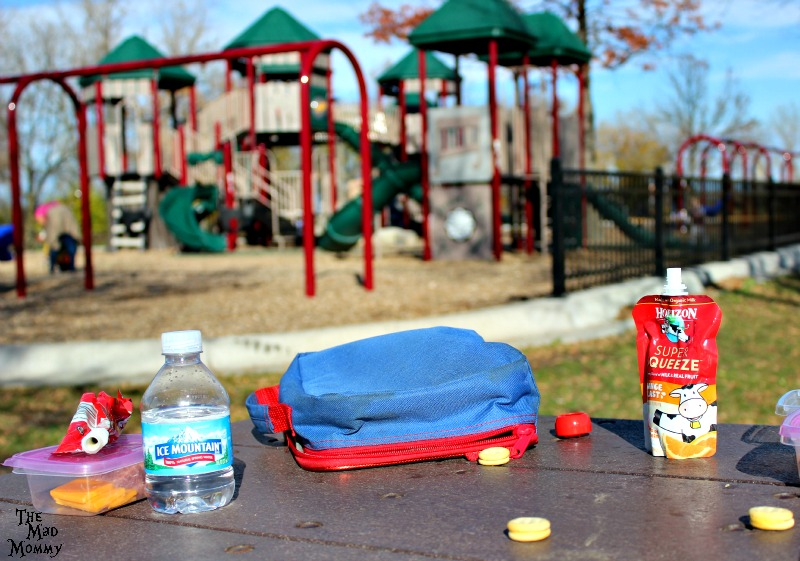 "When you have your #HorizonLunch at a park, the ""lunch"" part doesn't last very long! #ad #CollectiveBias"