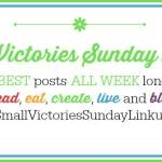 Small Victories Sunday #85
