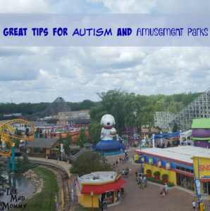 Great Tips for Autism and Amusement Parks