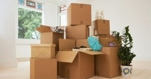 7 Tips for a Less Chaotic Move
