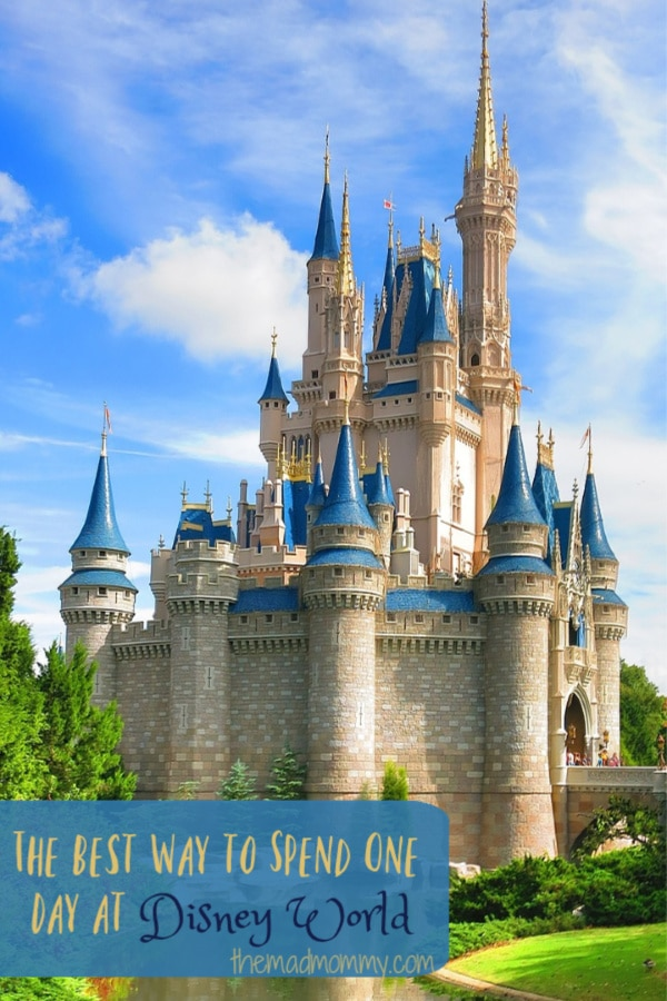 I have always heard that you need more than one day to TRULY experience Disney World. That you can't possibly spend just one day at Disney. Well, guess what! !t's entirely possible to spend one day at Disney World and have fun in the process.