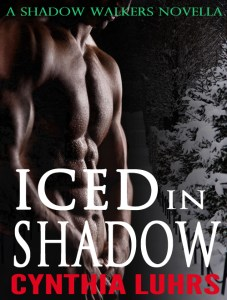 Iced in Shadow by Cynthia Luhrs