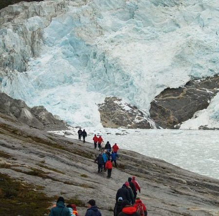 Pia Glacier in Patagonia