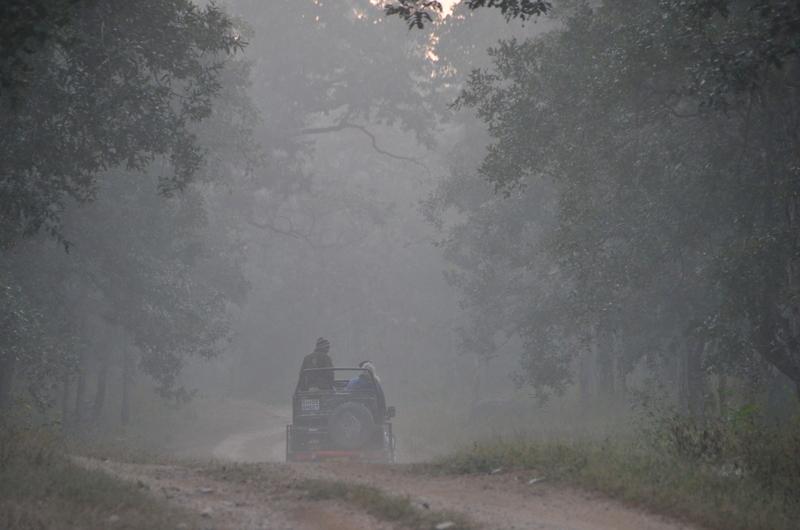 madhya-pradesh-tiger-reserves