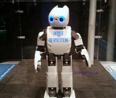 Robot Revolution Exhibit