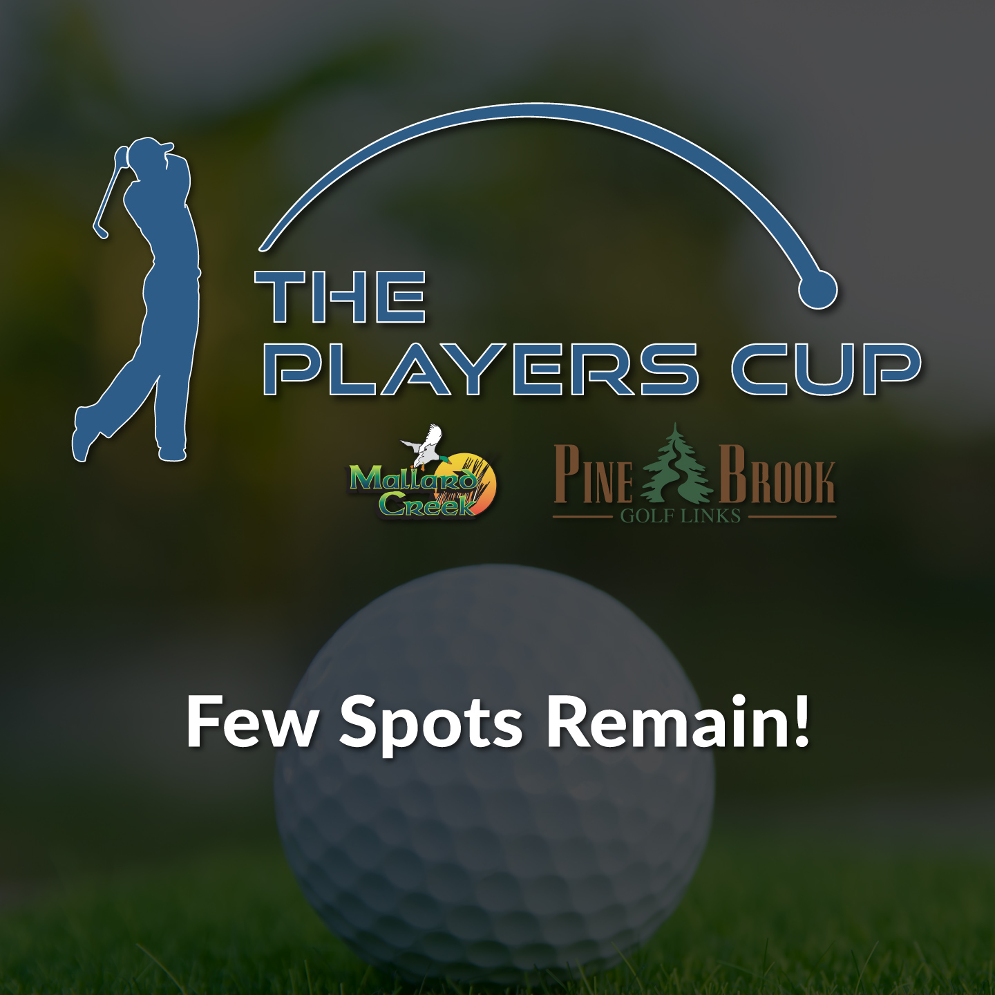 The 2021 Players Cup Golf League