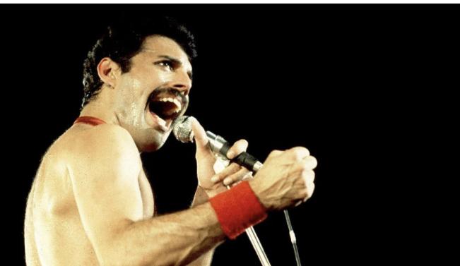 Lär känna Freddie Mercury!