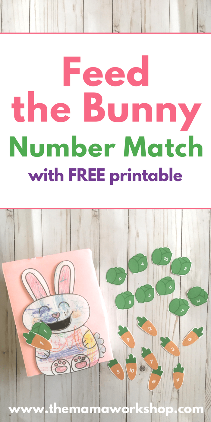 Feed the Bunny Number Match Game - Pinterest