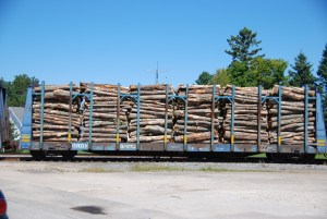 New Brunswick struggles to re-brand wood industry