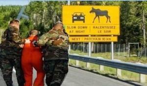 New Brunswick enters bold new economic era as CIA black site