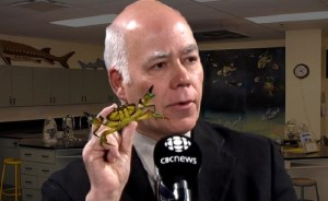 David Coon admits Bay of Fundy green crab infestation was failed viral marketing campaign for party