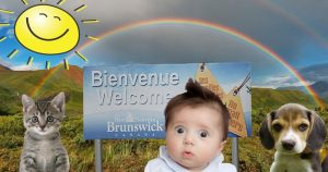 Listicle: 21 facts that prove New Brunswick is the best place on Earth