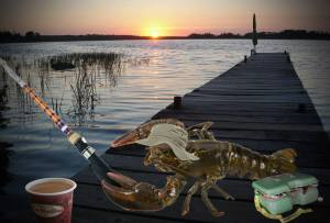 Lobster fishing season opens today in New Brunswick, lobsters thrilled