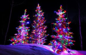 Moncton mandates Christmas lights on just one hour per day