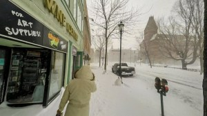Downtown Fredericton would close for weather if anything were still open