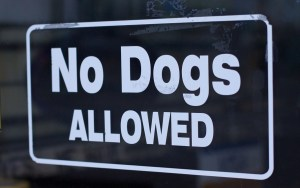 Taprooms now refusing dogs unless they're paying customers