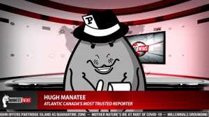 New Brunswick politicians tackle COVID-19 on 'The Manatee Political Panel'