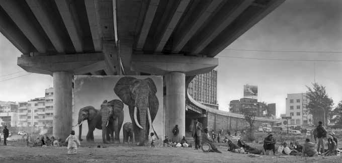UNDERPASS WITH ELEPHANTS