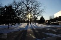 bitter cold sun