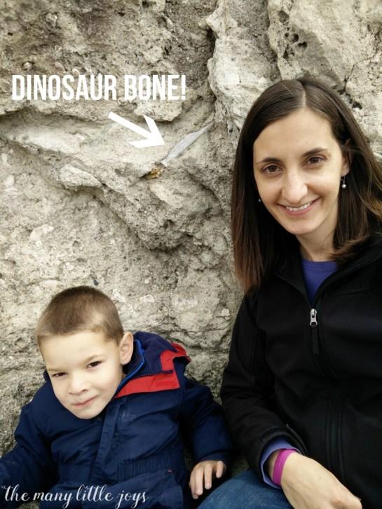 Dinosaur National Monument 5 copy