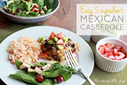 Mexican Casserole…this easy dinner comes together quickly with only 5 ingredients. It's kid-friendly and it's also a great meal for sneaking in extra veggies without your kids knowing. Mom win!