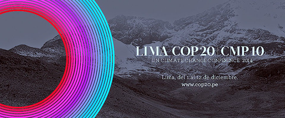 Victory or Failure at Lima COP 20?