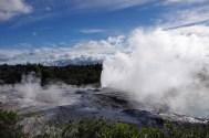 The geysers in Rotorua
