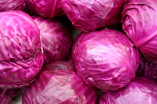 Red Cabbage Baby Food