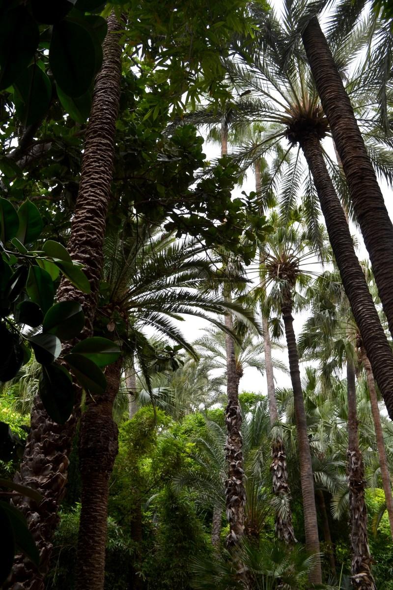 Urlaubsrecap + Outfitpost | Marrakech