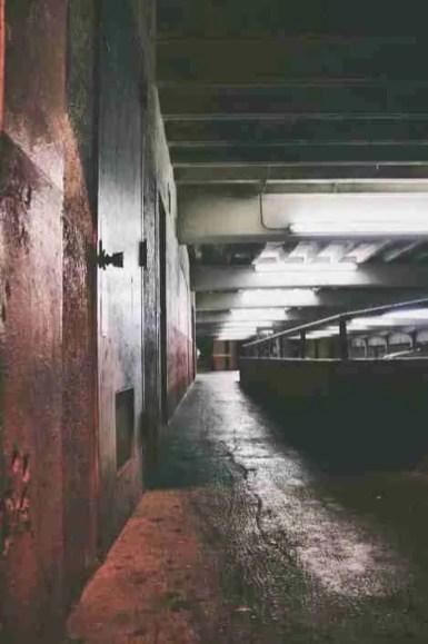 photography-15