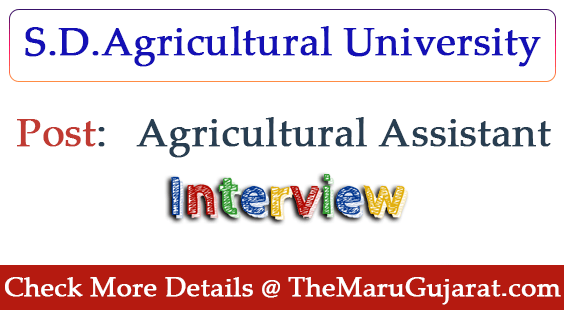 SDAU Recruitment For Agricultural Assistant Post