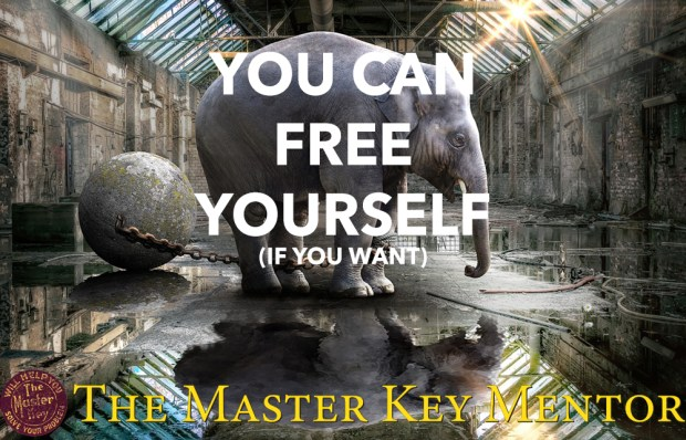 you-can-free-yourself-because-youre-not-an-elephant-anthony-raymond-the-master-key-mentor