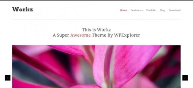Workz Free WP Theme