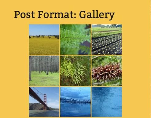 Gallery post format in Twenty Thirteen