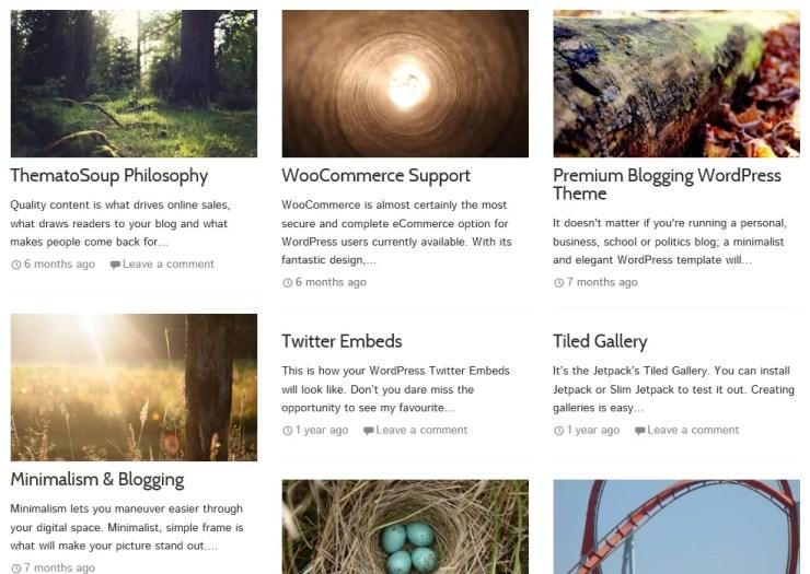 Masonry Gumbo WordPress Theme