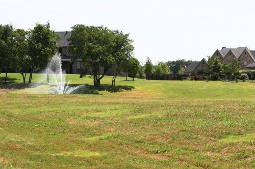 Cobbleston Farms - Heath Texas 6