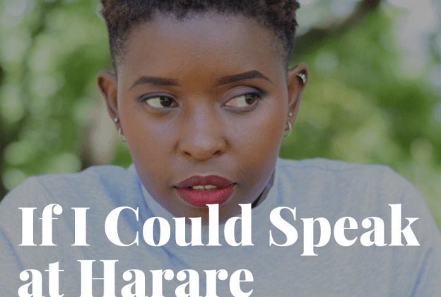 If I Could Speak at Harare WordCamp 2019