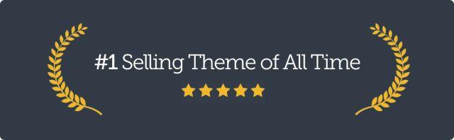 Avada   Website Builder For WordPress & WooCommerce - 30