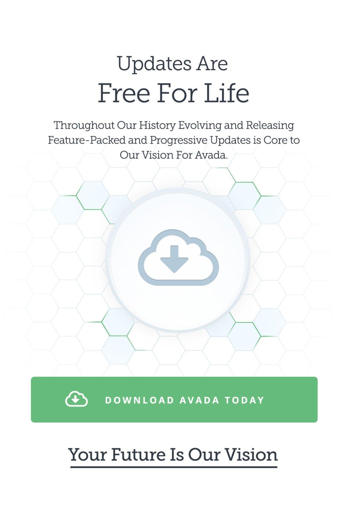 Avada | Website Builder For WordPress & WooCommerce - 25