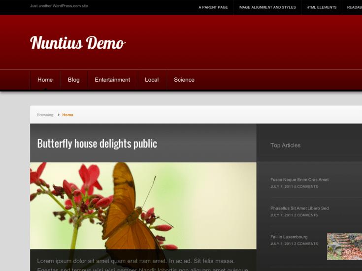 Screenshot of the Nuntius theme